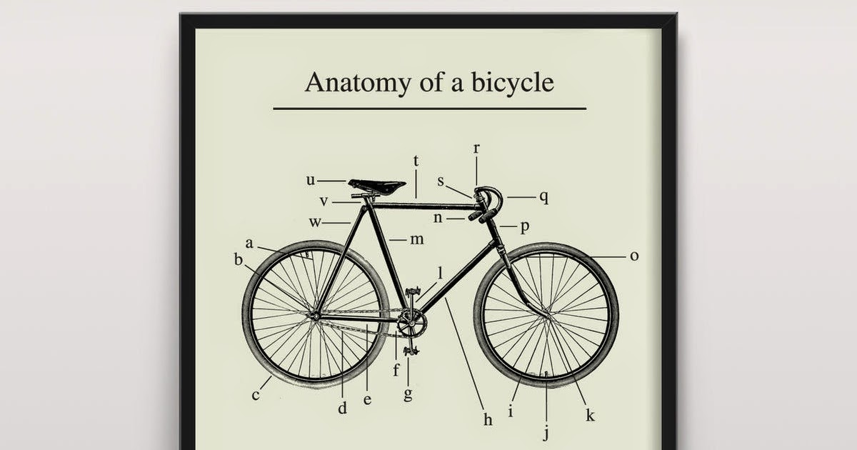 BicycleFriends.com: Anatomy of a Bicycle
