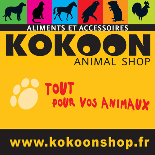KOKOON Animal shop