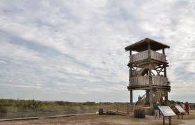 Replica Spanish Watchtower opens for 360-degree views at Fountain of Youth Archaeological Park | StAugustine.com 1 Watchtower St. Francis Inn St. Augustine Bed and Breakfast