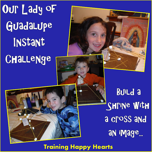 http://traininghappyhearts.blogspot.com/2015/12/our-lady-of-guadalupe-instant-challenge.html