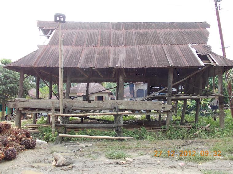 Potret Desa Padangbolak