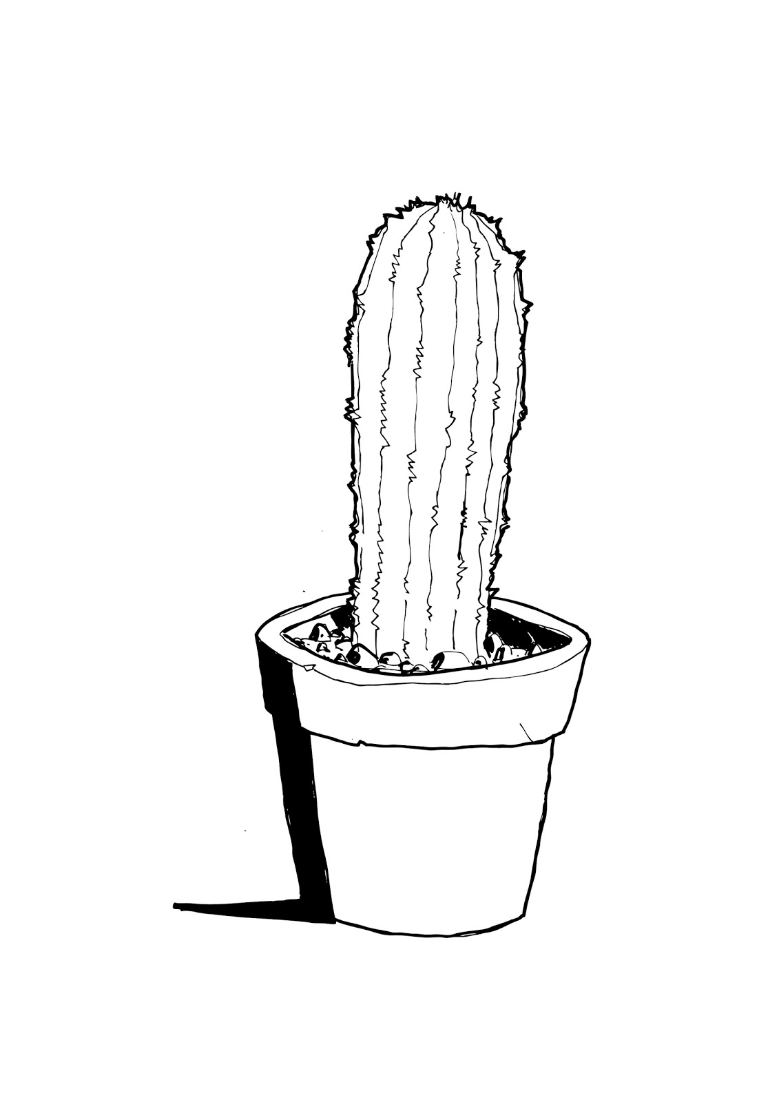 Line Drawing Cactus : Cactus tumblr drawings
