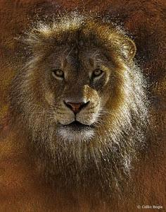Pintura de Leão