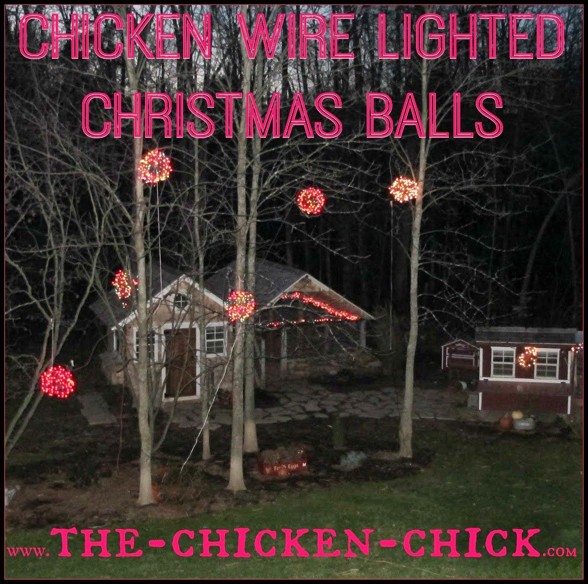 Lighted Christmas Balls made with chicken wire are a unique and festive decoration in any yard or chicken run.For little more than a 20 minute time investment and approximately $3.00 per ball, a stunning, outdoor display can be created that will be the envy of the neighborhood!