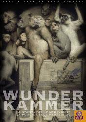 Ra ContemporaryArt - WUNDER KAMMER - la Stanza delle meraviglie - la Puglia delle meraviglie