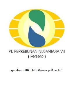 Lowongan Kerja BUMN PT Perkebunan Nusantara VIII