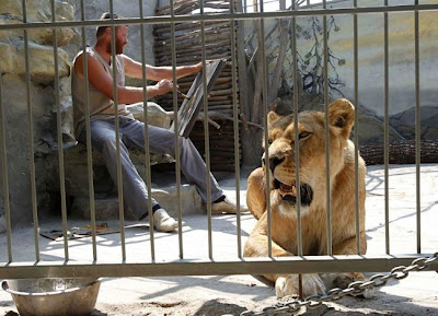 [Image: living_with_lions_04.jpg]