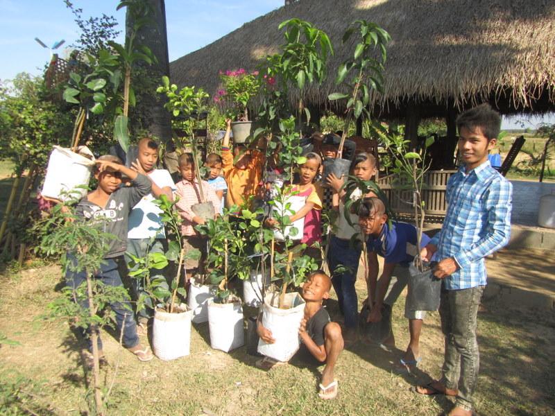 Kirikou et les arbres fruitiers
