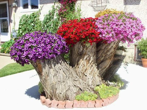 Bonitas jardineras en troncos de rboles quiero m s dise o for Que plantas poner en una jardinera