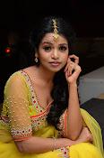 Bhavya Sri glamorous photo gallery-thumbnail-17
