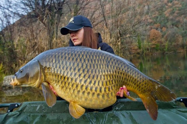 Catch reports carp fishing france the history of carp for History of fishing