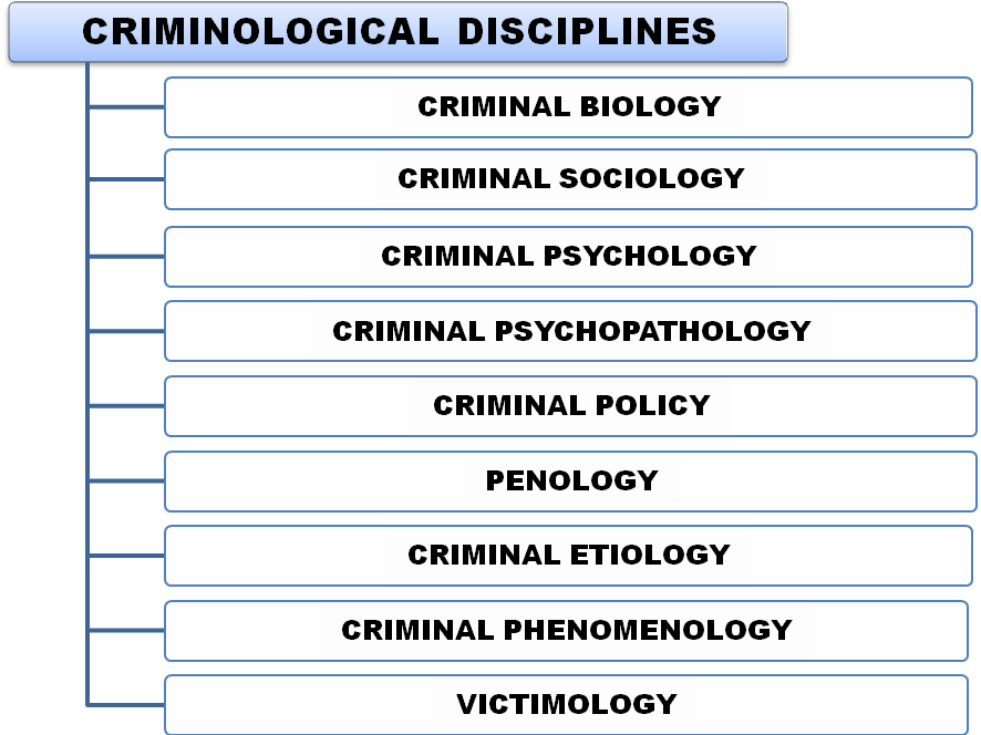an introduction to the analysis of criminology Database of example criminology essays introduction the introduction of psychotherapy programs into why has the analysis of crimes of the powerful been such a.