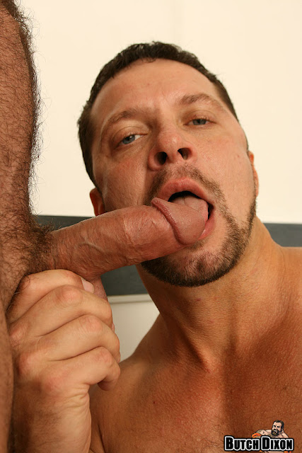 porn addicted bear Vinnie D Angelo Marco de Brute 12 hunky nude men. Hunky hairy men Vinnie D'Angelo and Marco de Brute. at 3:12