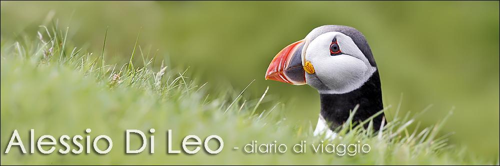 Alessio Di Leo - diario di viaggio