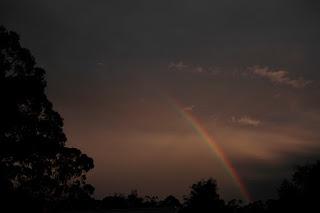 Greendale Sky