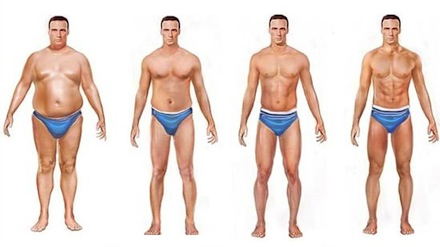Hasta que tiempo podr as vivir de la grasa de tu cuerpo - Como ponerse en forma en un mes ...