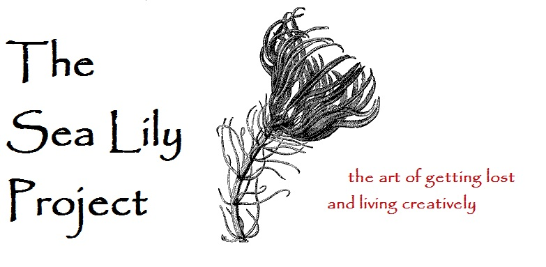 The Sea Lily Project
