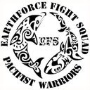 EARTHFORCE FIGHT SQUAD