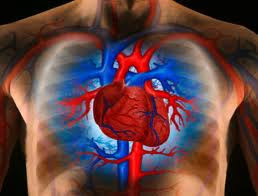 Causes and Home Remedies for Heart Disease