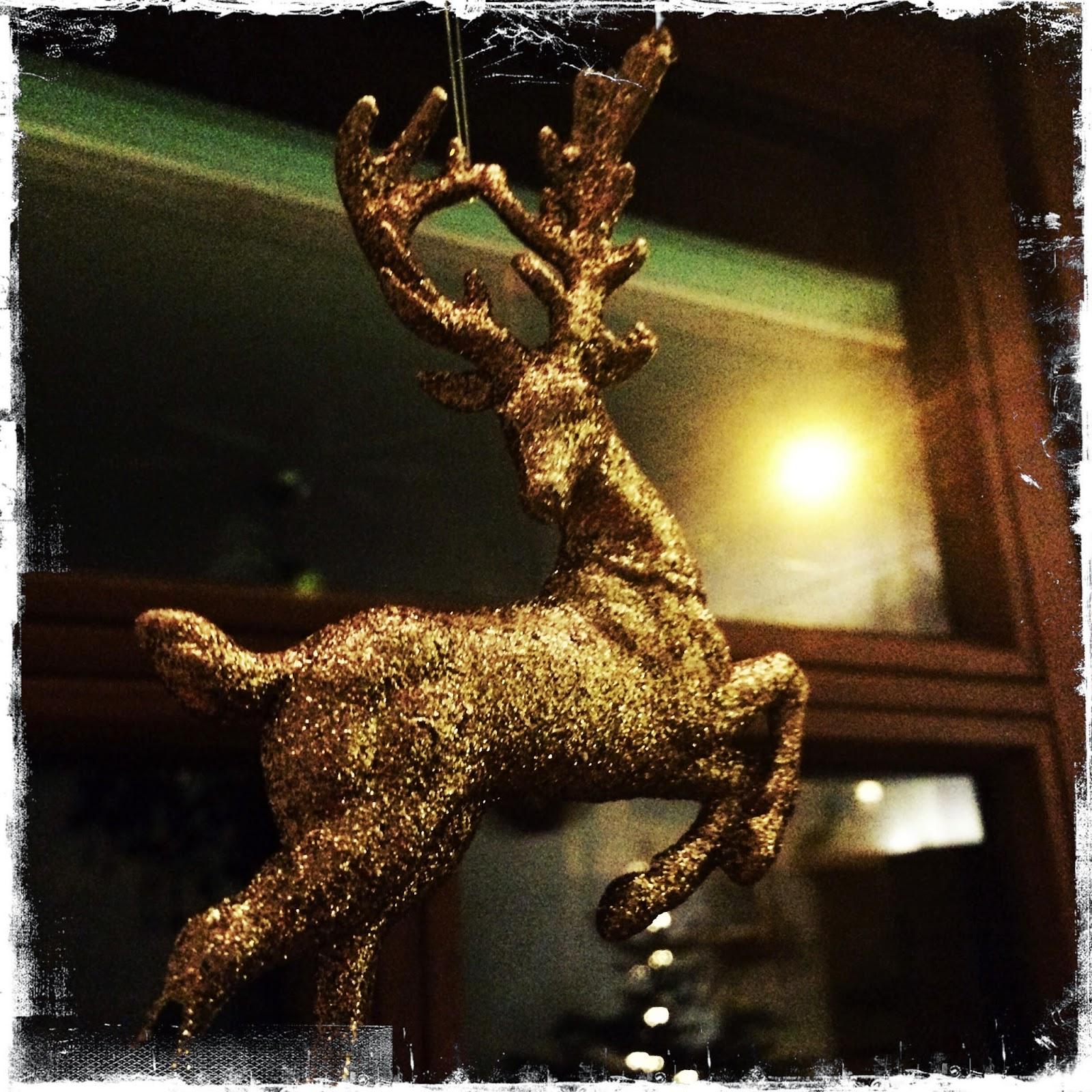 Olivenernte und so weiter lieblingsklicks 14 mit for Weihnachtsideen 2014