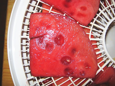watermelon slices prepared for drying