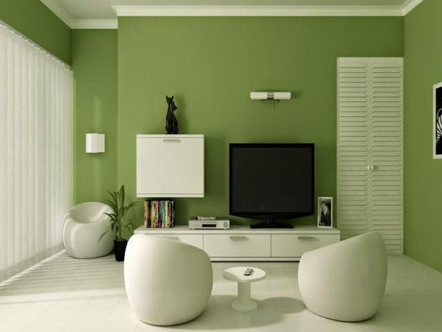 wall paint colors ideas pictures