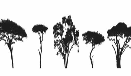 tree-brushes