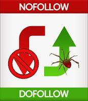 Nofollow và Follow, những điều cần biết