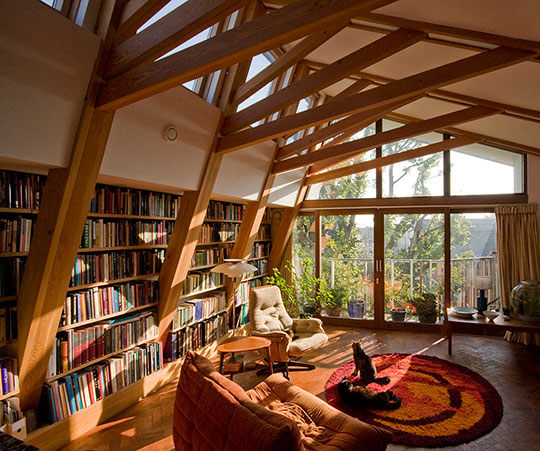 cool home libraries