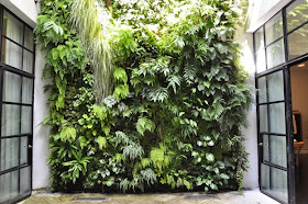 Easy and User-Friendly Ideas of Vertical Gardening   Home And Decoration Tips