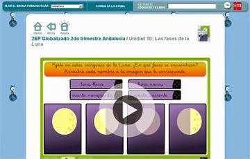 http://www.primaria.librosvivos.net/2epcmcp_ud8_act2_Las_fases_de_la_Luna_17.html