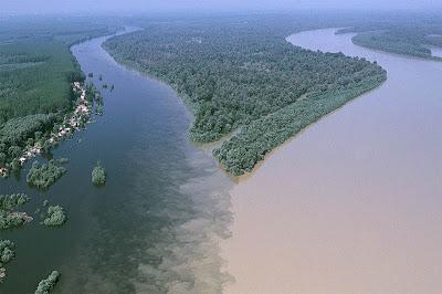 Pertemuan Sungai Drava dan Danube di Osijek, Croatia.
