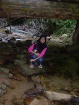 Di Sungai Hutan Simpan Di Besut