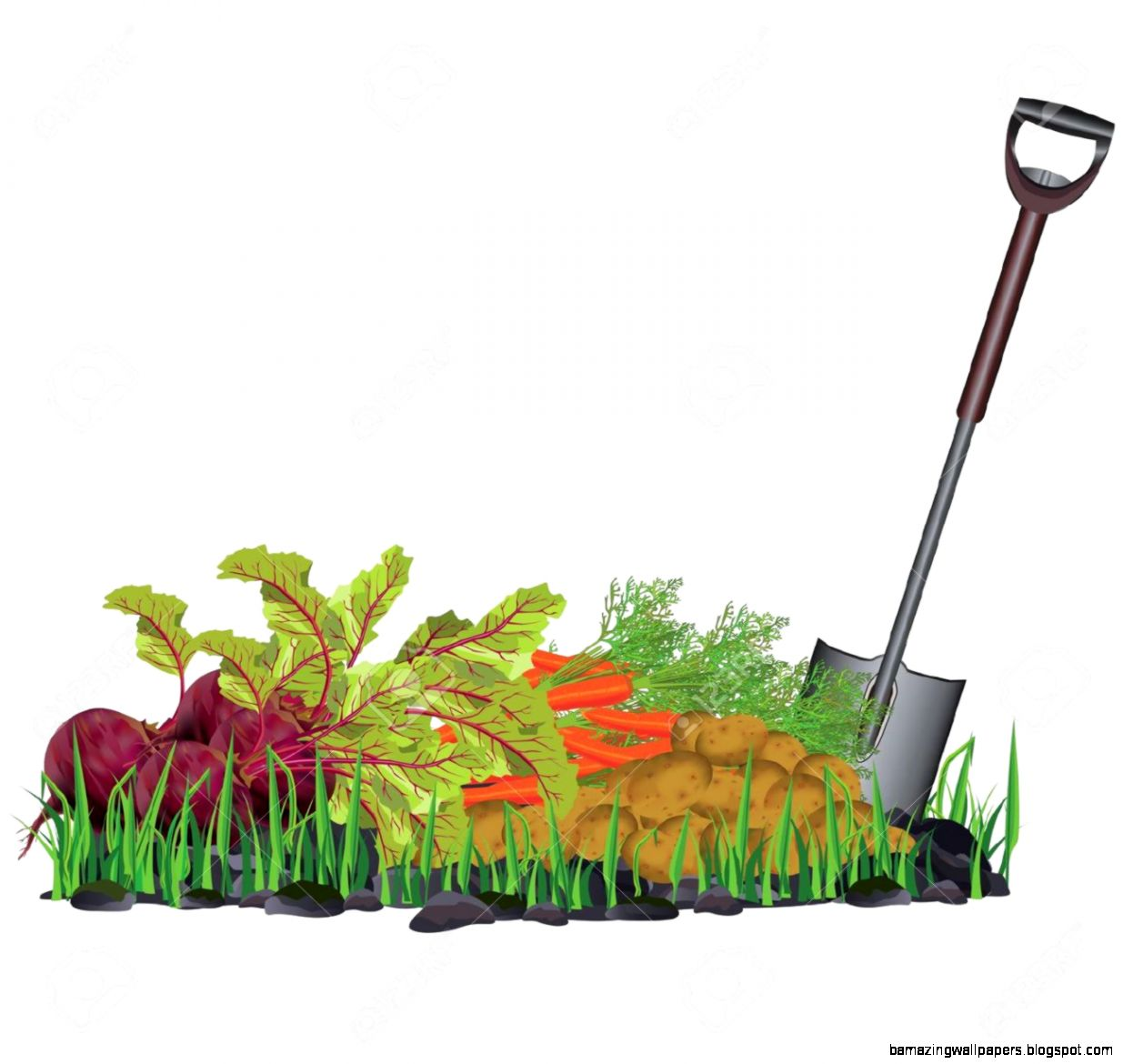Vegetable Gardening Stock Illustrations Cliparts And Royalty Free