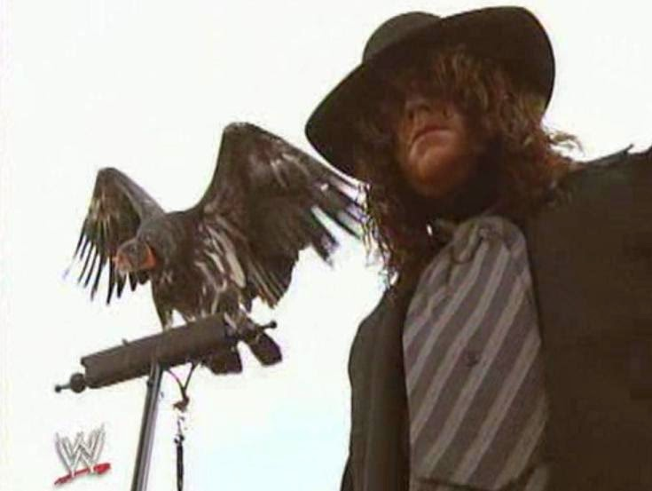 WWE / WWF WRESTLEMANIA 9: An iconic shot of The Undertaker at Wrestlemania
