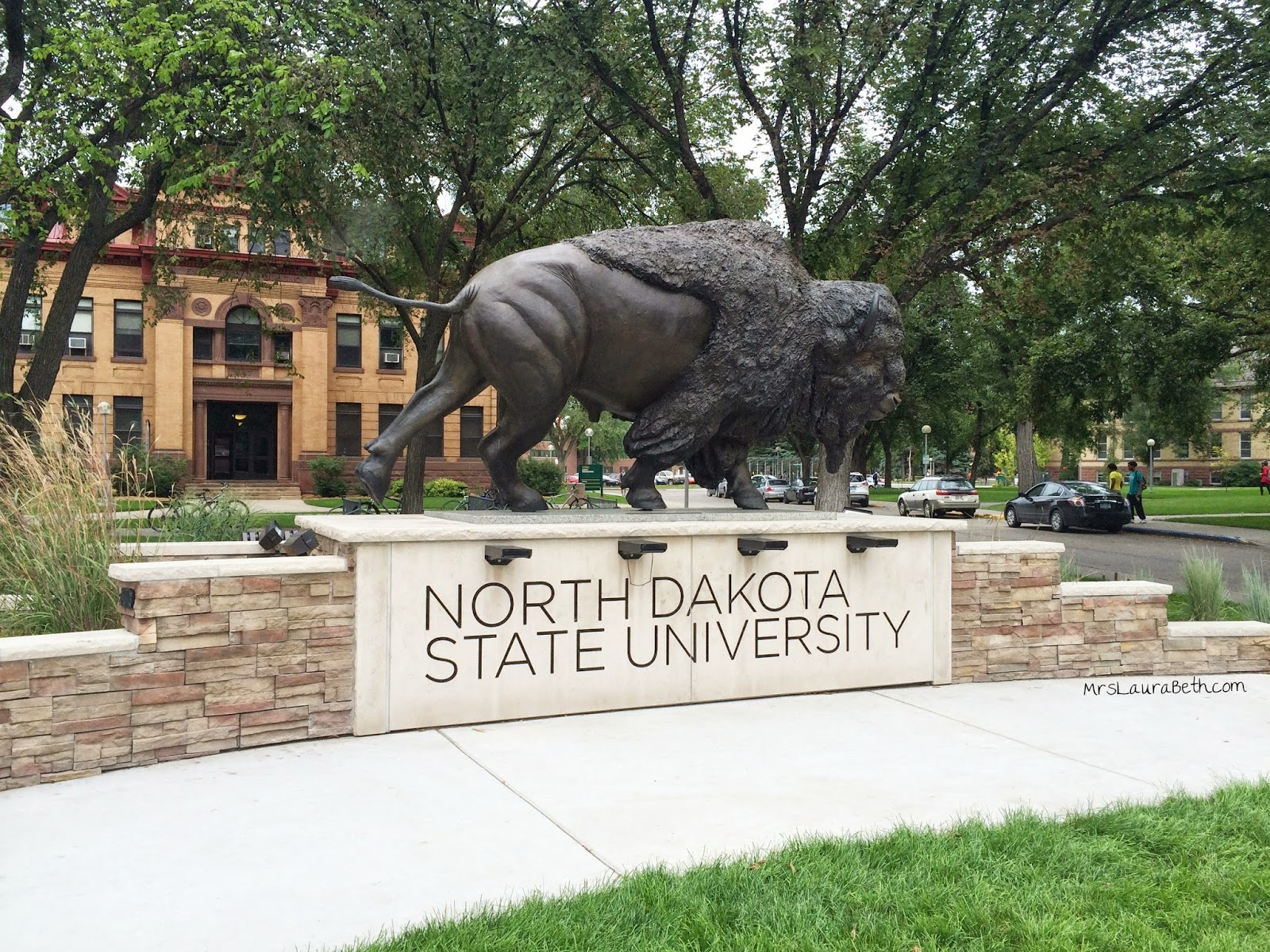 north dakota state university, college, BisoNation