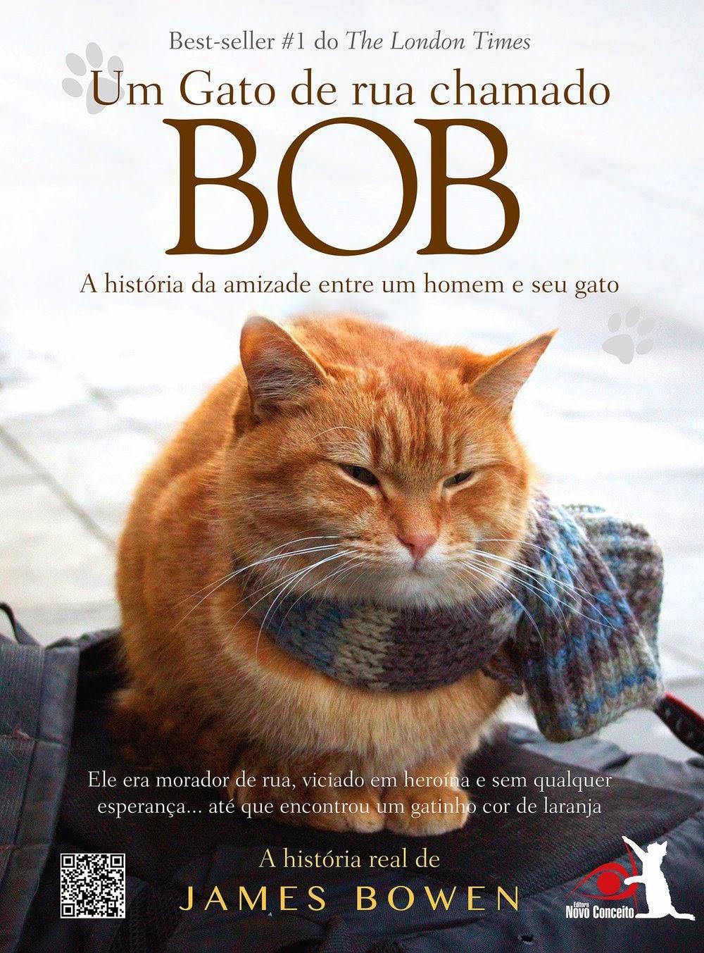 http://livrosvamosdevoralos.blogspot.com.br/2015/02/resenha-um-gato-de-rua-chamado-bob.html
