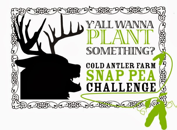 Snap Pea Challenge 2014