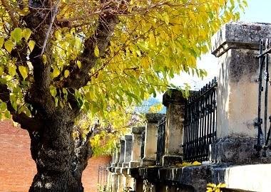 Les antigues escoles, les moreres. Decembre 2014