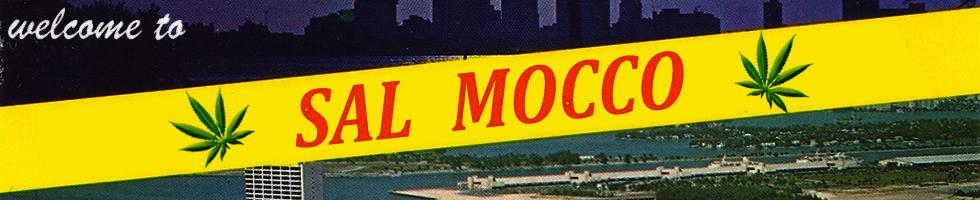Sal Mocco