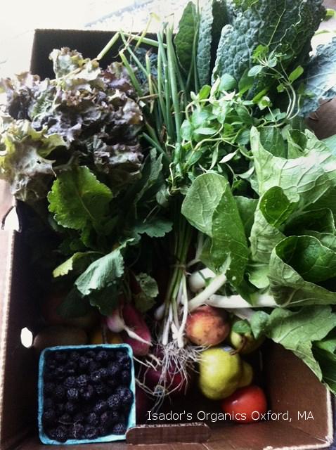 Isador's Organics