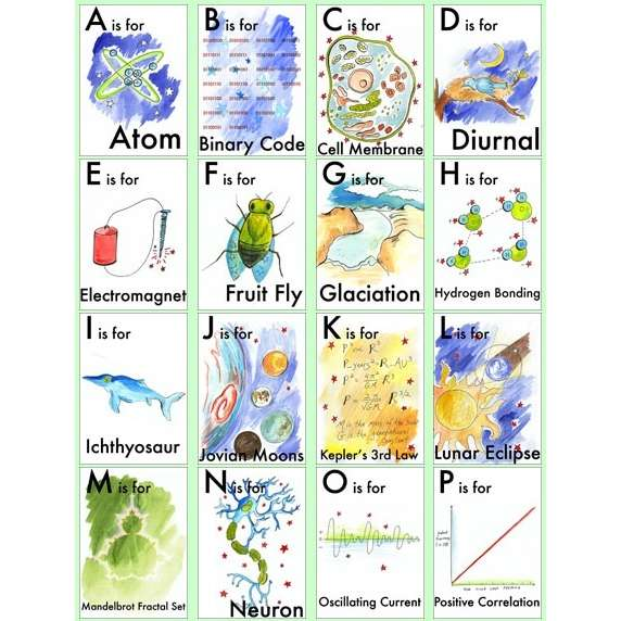 Cards for kids study sheets for children of elementary science