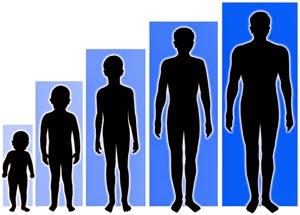 Tinggi badan berdasarkan usia