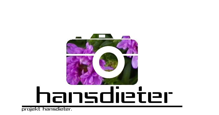 Projekt Hans-Dieter