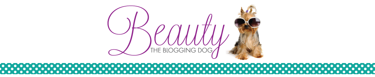 Beauty, The Blogging Dog