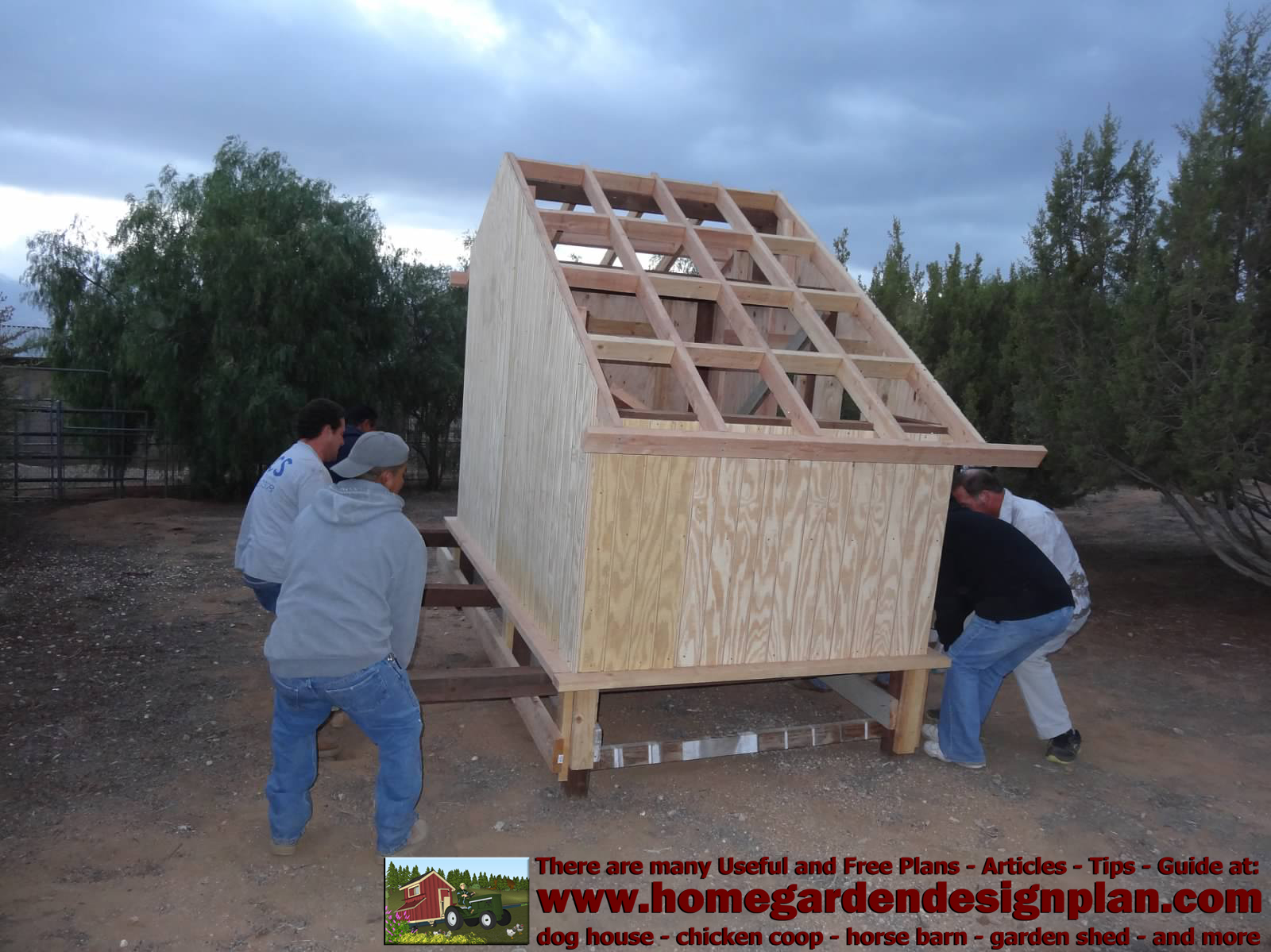 how to build a pigeon coop plans