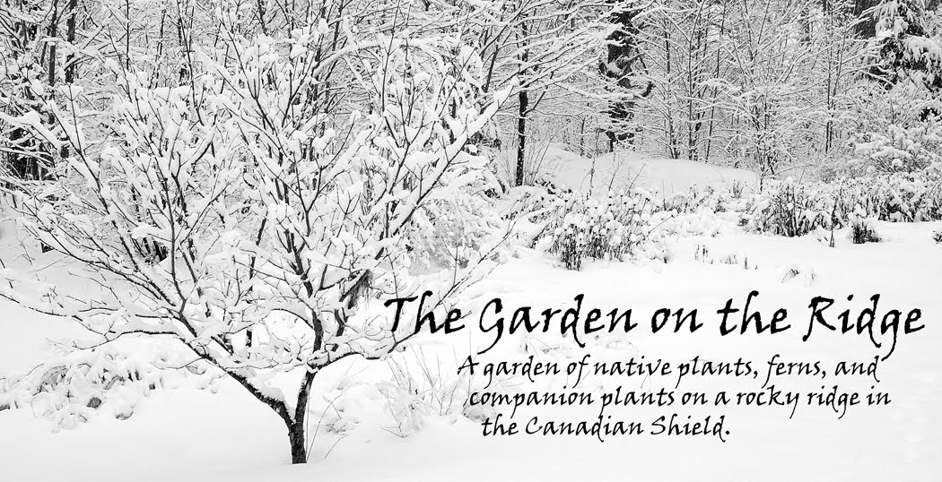 The Garden On The Ridge