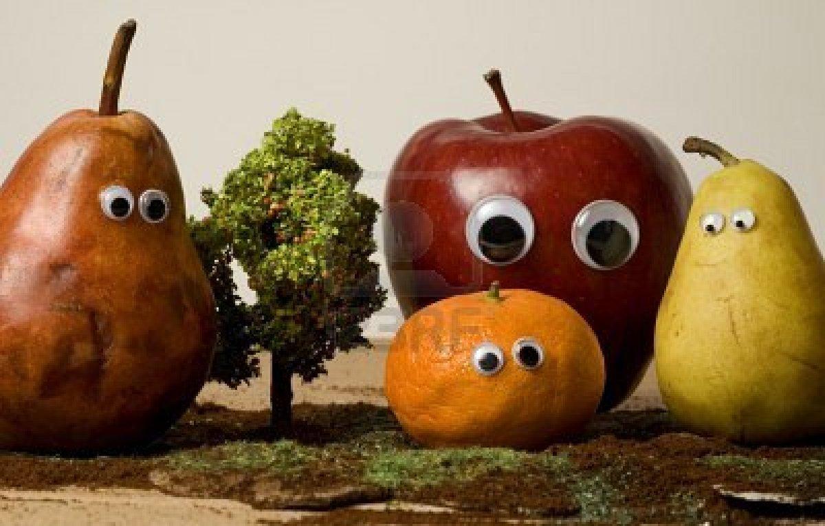 Que Son Los Organismos Geneticamente Modificados