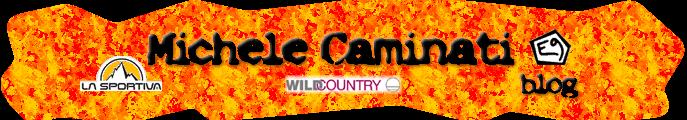 Michele Caminati Blog