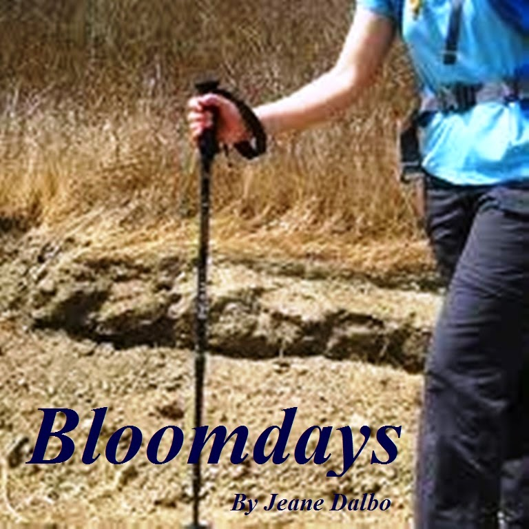 Bloomdays